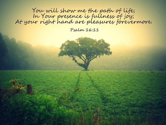 path-of-life